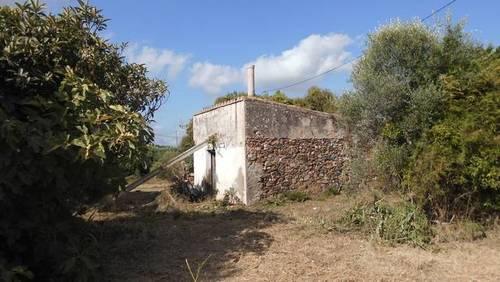 imagen 4 de Venta de finca de recreo en Riudoms (Tarragona)