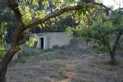 imagen 2 de Venta de finca rústica con almendros en Cabra del Camp