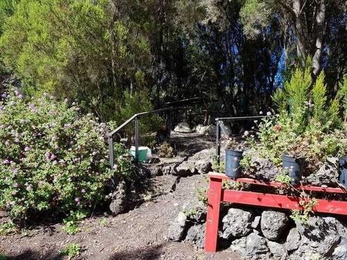imagen 2 de Venta de finca vallada y con buen acceso en Garachico (Tenerife)