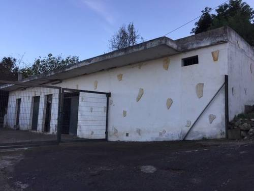 imagen 3 de Venta de finca con vivienda y terreno para animales en Los Realejos (Tenerife)