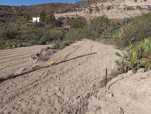 imagen 2 de Venta de terreno rústico en Fasnia (Tenerife)