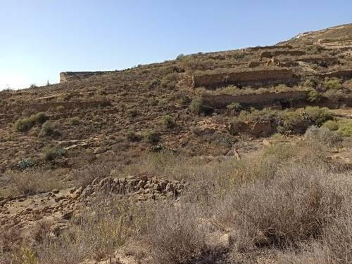 imagen 3 de Venta de terreno rústico en Fasnia