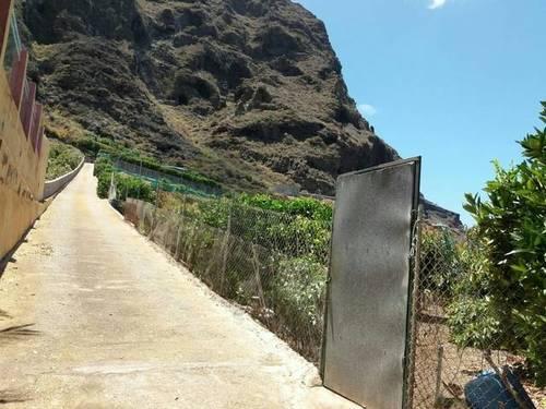 imagen 4 de Se vende finca con frutales en Buenavista del Norte (Tenerife)
