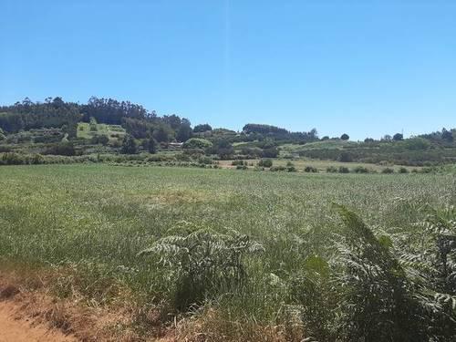 imagen 1 de Venta de terreno agrícola o ganadero en La Esperanza