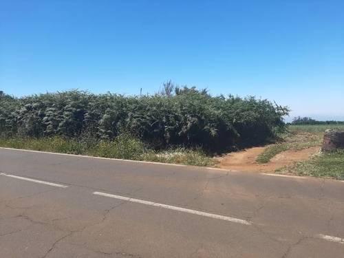imagen 2 de Venta de terreno agrícola o ganadero en La Esperanza