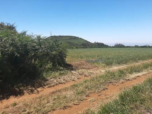 imagen 3 de Venta de terreno agrícola o ganadero en La Esperanza
