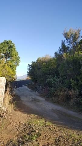 imagen 4 de Venta de finca con cuarto de aperos en  San José de los Llanos (Tenerife)