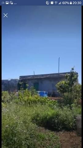 imagen 2 de Venta de finca con cuarto de aperos en  San José de los Llanos (Tenerife)