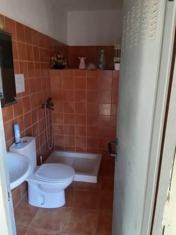 imagen 6 de Venta de finca rústica con vivienda en Güímar (Tenerife)