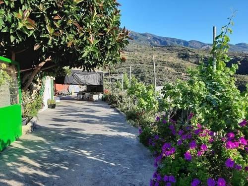 imagen 3 de Venta de finca rústica con vivienda en Güímar (Tenerife)