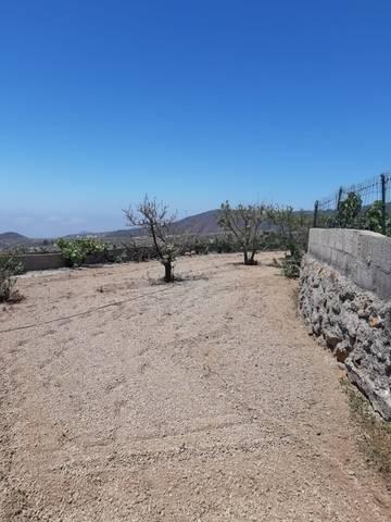 imagen 4 de Venta de precios finca con vivienda y terreno en Granadilla