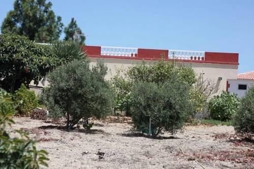 imagen 2 de Venta de precios finca con vivienda y terreno en Granadilla