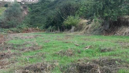imagen 2 de Venta de terreno en Los Realejos (Tenerife)
