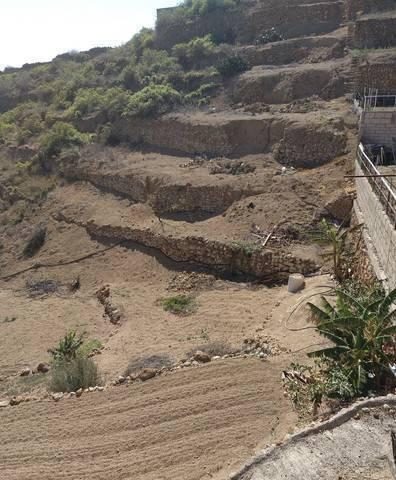 imagen 2 de Venta de finca rústica con cueva en Güímar (Tenerife)