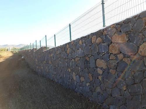 imagen 2 de Venta de finca con viñedos en Vilaflor (Tenerife)
