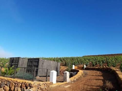 imagen 3 de Venta de finca con viñedos en Vilaflor (Tenerife)