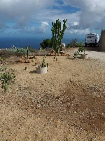 imagen 7 de Venta de terreno con vivienda, cuevas y viñedo en Fasnia (Tenerife)
