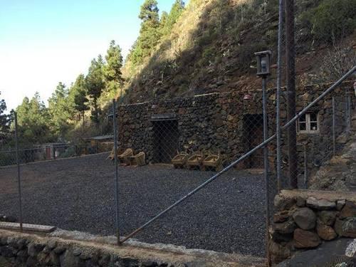 imagen 1 de Venta de finca con bodega en El Paso (Tenerife)