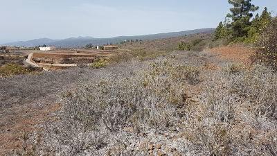 imagen 1 de Venta de terreno en Guía de Isora