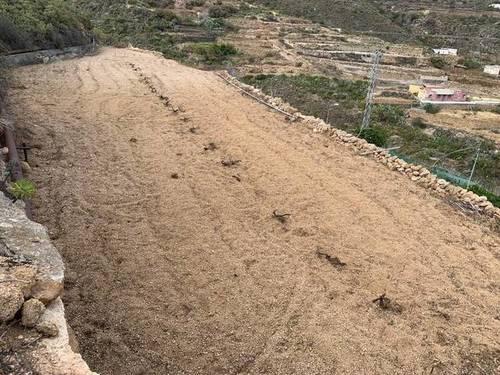 imagen 2 de Venta de finca con charca y cueva en Fasnia (Tenerife)
