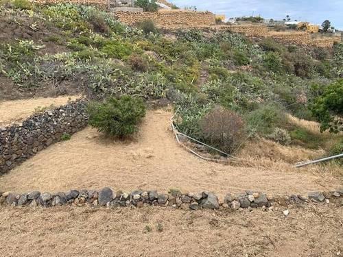 imagen 6 de Venta de finca con charca y cueva en Fasnia (Tenerife)