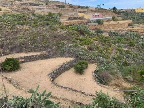 imagen 3 de Venta de finca con charca y cueva en Fasnia (Tenerife)