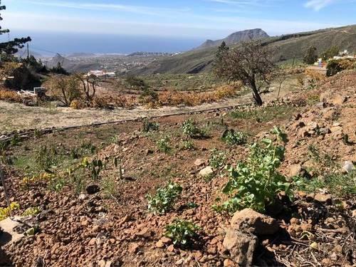 imagen 5 de Venta de terreno con casas para restaurar en Jama (Tenerife)