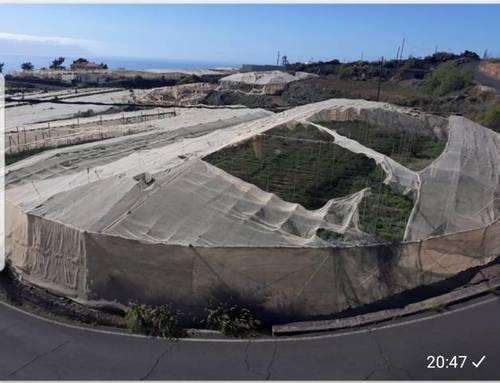 imagen 3 de Venta de terreno con estanque e invernaderos en Guia de Isora (Tenerife)