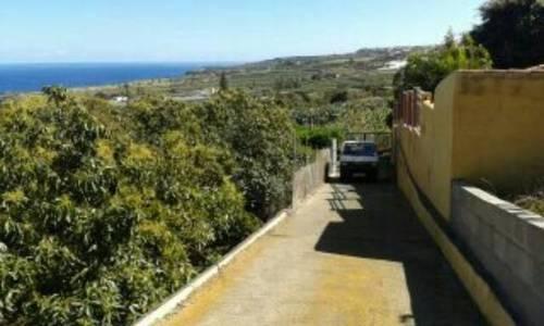imagen 5 de Venta de finca con frutales en Buenavista del Norte (Tenerife)