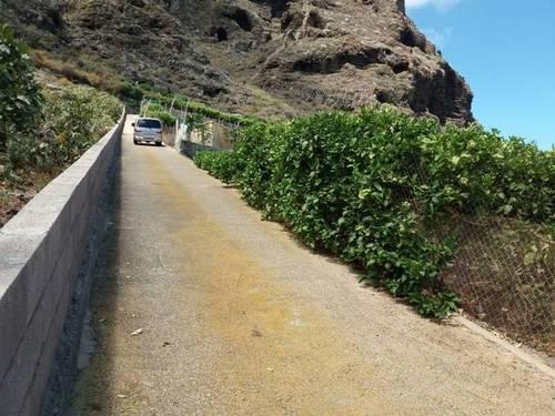 imagen 2 de Venta de finca con frutales en Buenavista del Norte (Tenerife)