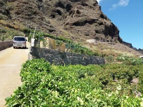 imagen 3 de Venta de finca con frutales en Buenavista del Norte (Tenerife)