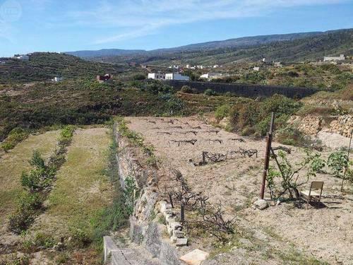 imagen 1 de Venta de terreno edificable con viñas y cueva en Güímar (Tenerife)