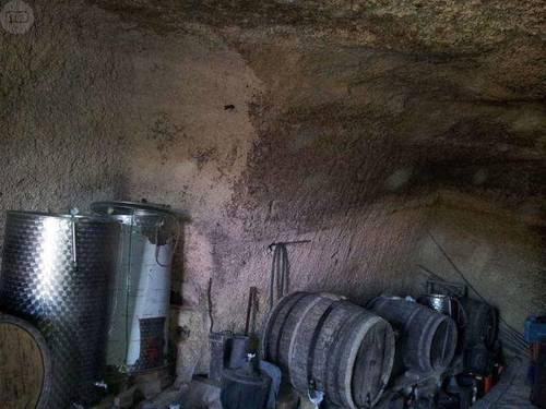 imagen 2 de Venta de terreno edificable con viñas y cueva en Güímar (Tenerife)