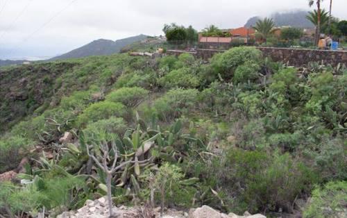 imagen 1 de Venta de finca rústica en San Cristóbal de la Laguna