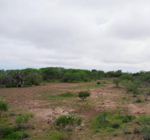 imagen 4 de Venta de finca rústica en San Cristóbal de la Laguna