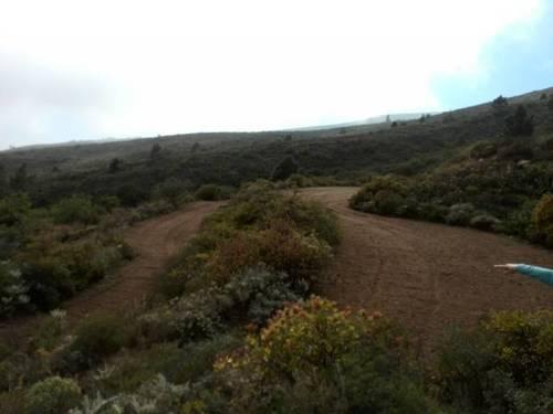 imagen 2 de Venta de finca rústica en Arico con vistas al mar y la montaña (Tenerife)