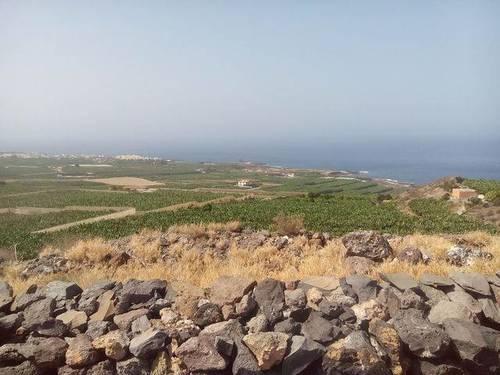 imagen 2 de Venta de terreno rústico en la costa de Alcalá (Tenerife)