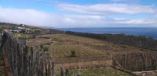 imagen 5 de Venta de terreno con tres cuevas Güímar (Tenerife)