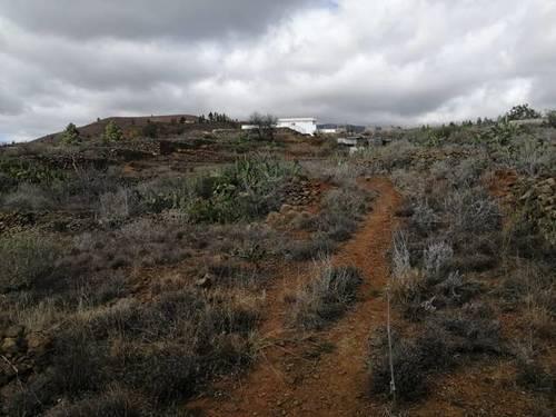 imagen 1 de Venta de finca bien ubicada en Vilaflor (Tenerife)