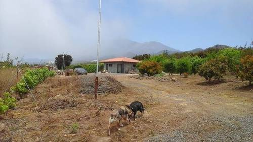 imagen 1 de Venta de finca con vivienda en El Tanque (Tenerife)