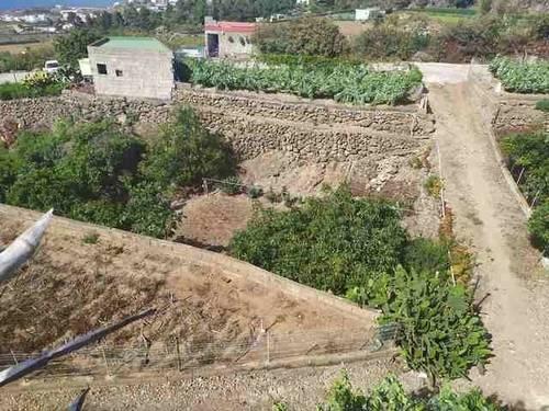imagen 3 de Venta de terreno con frutales y antiguo lagar en Icod de los Vinos (Tenerife)
