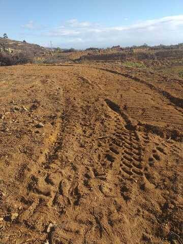 imagen 2 de Venta de finca para cultivo en Fasnia (Tenerife)