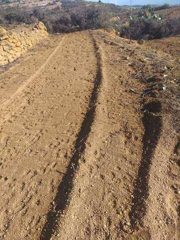 imagen 3 de Venta de finca para cultivo en Fasnia (Tenerife)