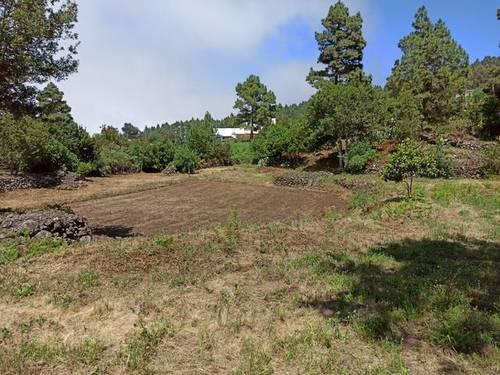 imagen 2 de Venta de terreno rústico en Garachico (Tenerife)