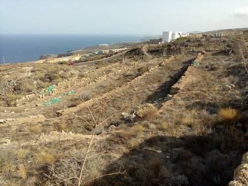 imagen 1 de Venta de finca rústica en Güímar