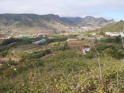imagen 1 de Venta de finca con luz y agua en Tegueste (Tenerife)