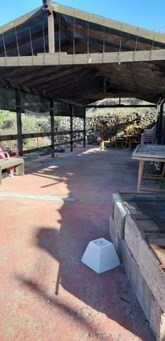imagen 3 de Venta de casa rural con finca en Granadilla de Abona (Tenerife)