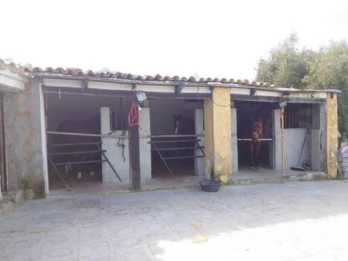 imagen 1 de Finca de recreo con piscina en Pulianas