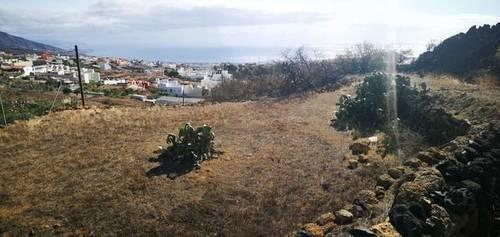 imagen 2 de Venta de finca con bonitas vistas en Arafo  (Tenerife)