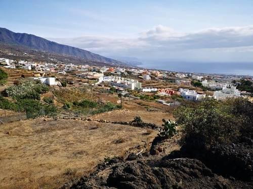 imagen 3 de Venta de finca con bonitas vistas en Arafo  (Tenerife)